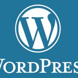 Планета  CMS WordPress: обзор 150 лучших плагинов